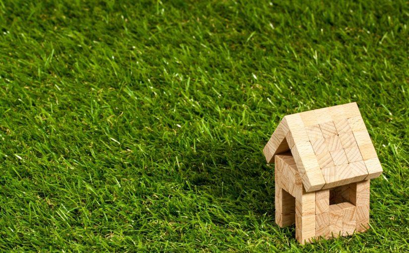 zielone dachy cena